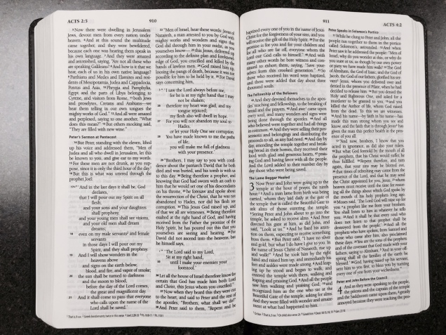 Acts in the ESV Thinline