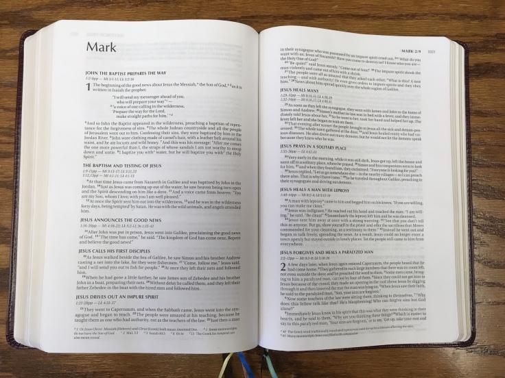 niv-single-column-bible-mark