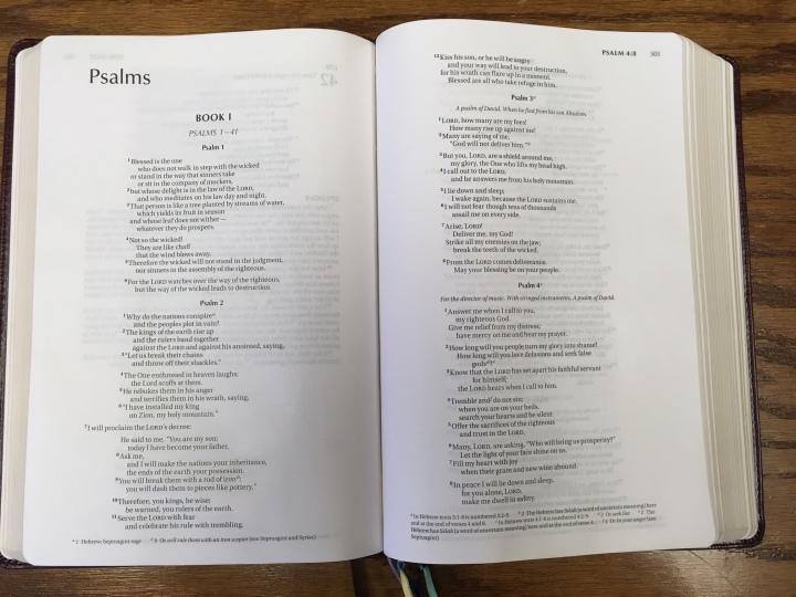 niv-single-column-bible-psalms