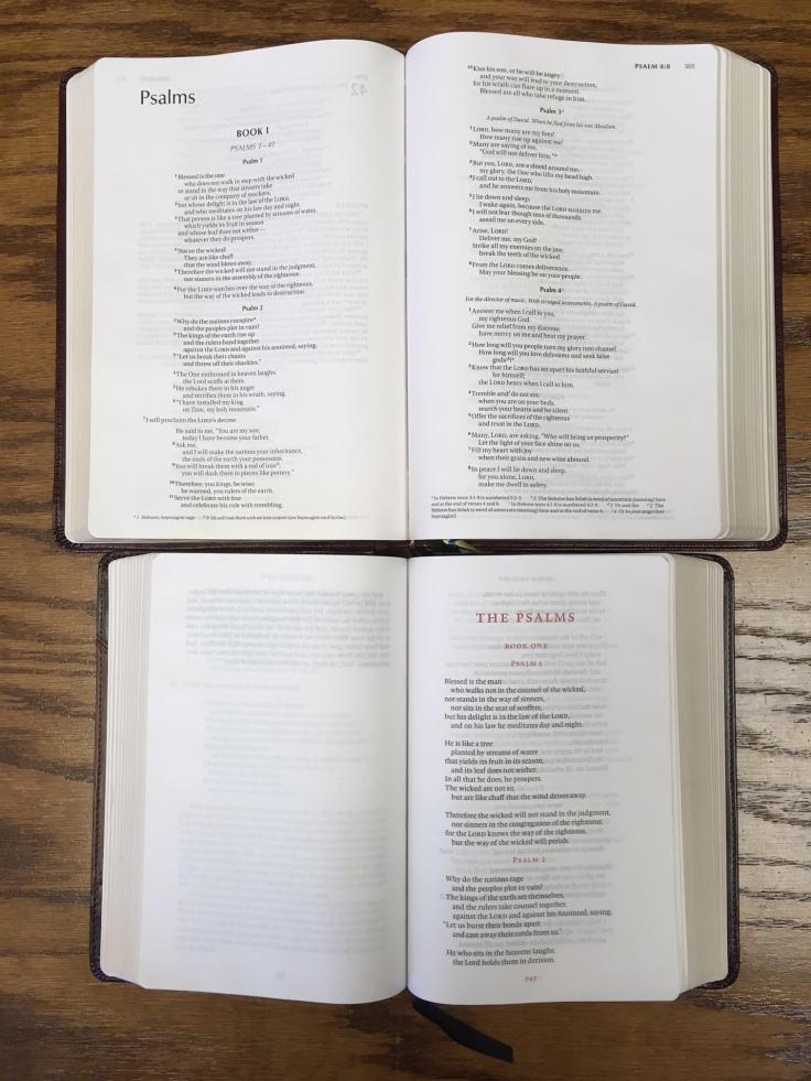 nivscb-vs-esvrb_psalms