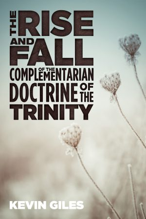 The Rise and Fall of the Complementarian Doctrine of the Trinity | Book Review